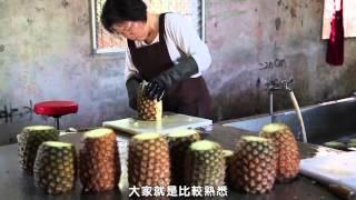青年大佃農接棒‧台灣農業好棒 最佳影片獎-年輕人回「嘉」