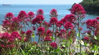 Cornwall - Kingsand/Cawsand