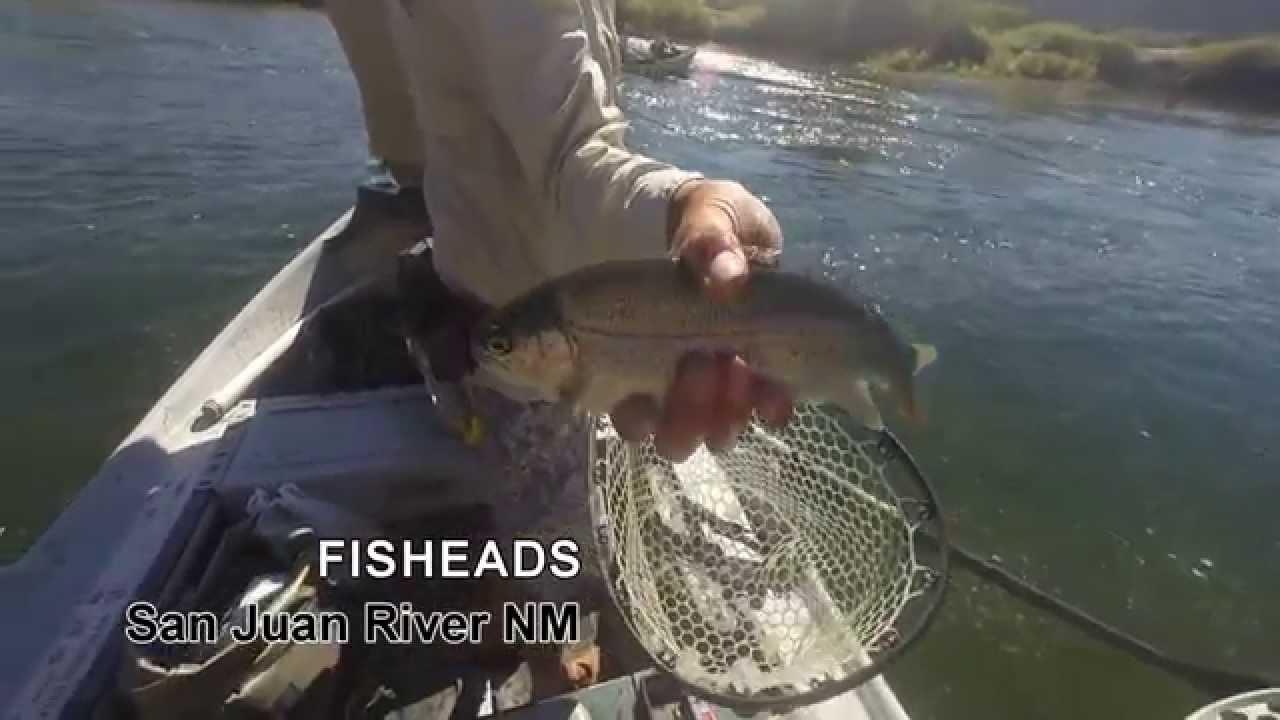 Fisheads fly fishing nm youtube for Fish heads san juan