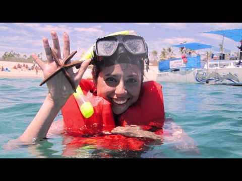 Snorkel, Los Cabos/ Trimaran Sirena