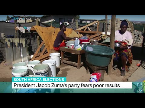 South Africa Elections: President Jacob Zuma's party fears poor results, Tsidi Bishop reports