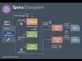 Malware Analysis - Exploring Spora's Encryption Procedure