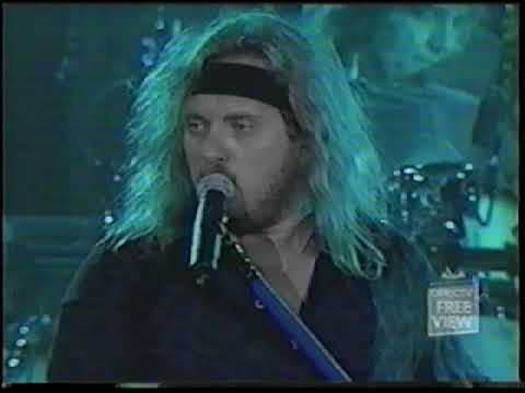 Lynyrd Skynyrd Live 2001