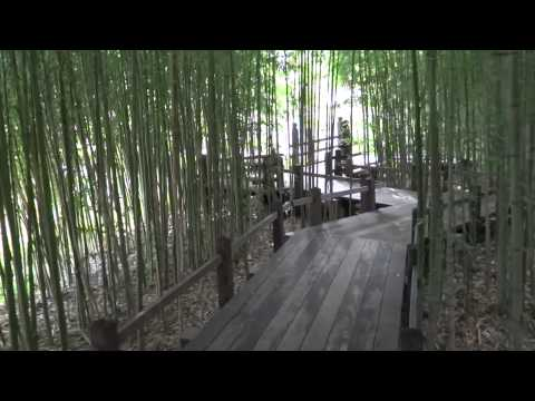 San Marino, California - Huntington Botanical Gardens Japanese Garden HD (2014)