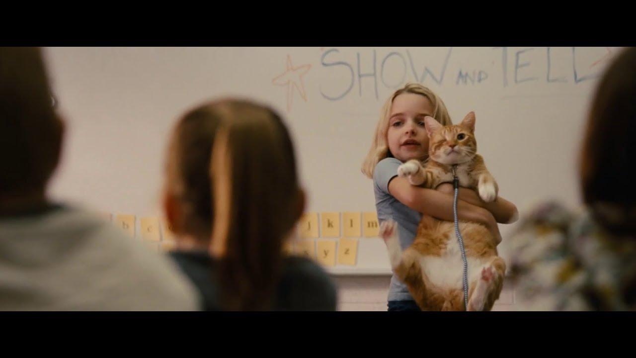 Download Gifted - Cat Scene   School (HD)