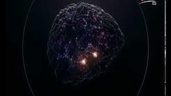 The Brain - Das menschliche Gehirn 1: Was ist die Realität ? 3v3