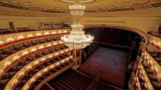 Александринский театр из-за коронавируса показал зрителям спектакль онлайн