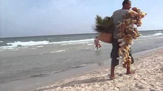 Тунис пляж море. #гидШадринАндрей