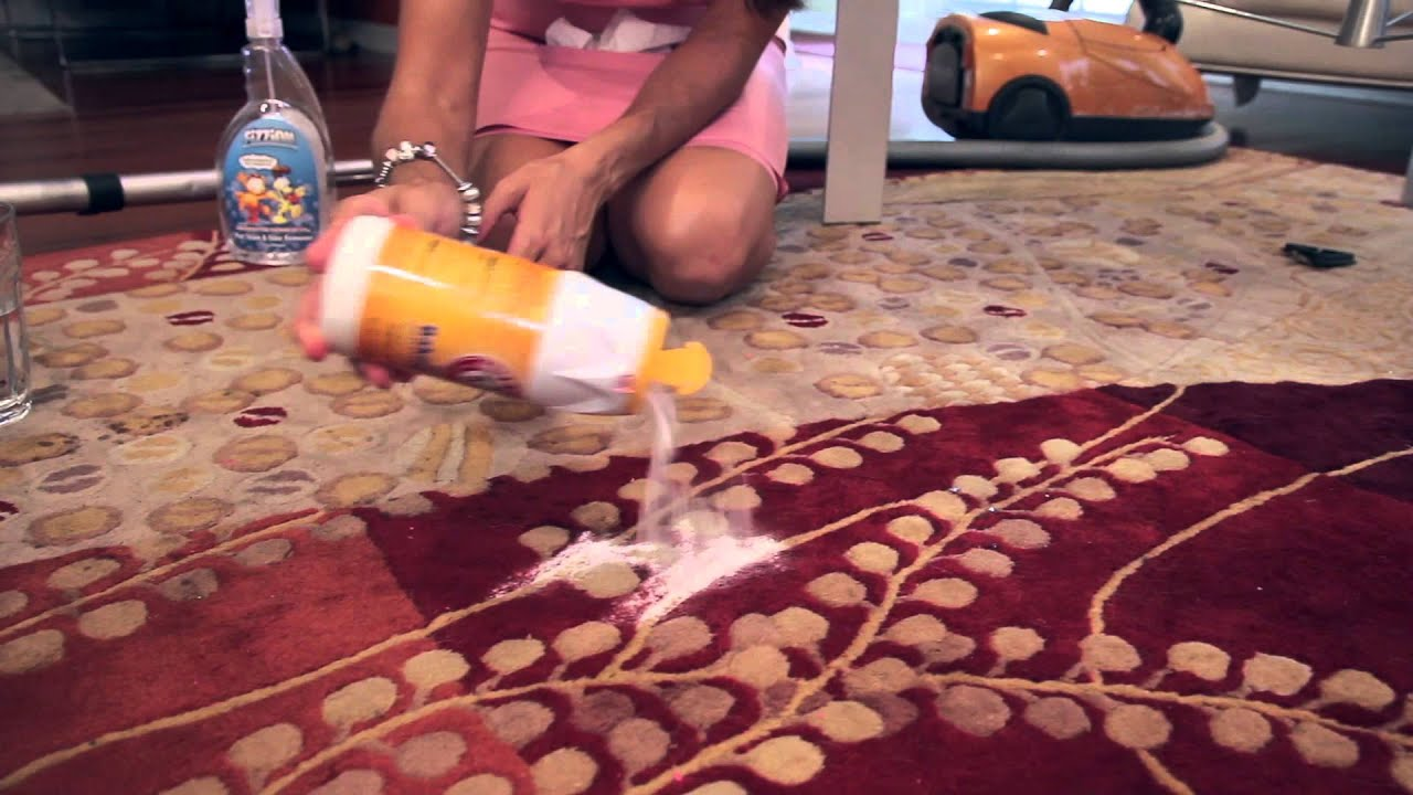 What Can You Put on the Carpet to Keep Dogs From Going to ...