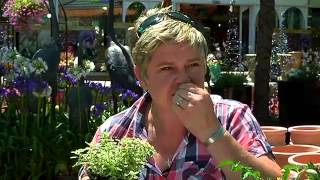 Gardening Tips with Tanya Visser -  Herbs and Vegetables
