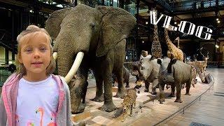 Влог - Большая Галерея Эволюции, Париж - Разнообразие живого мира (Grande galerie de l'évolution)