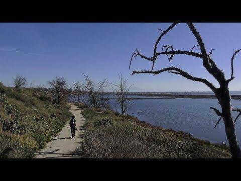 Bolsa Chica Ecological Reserve Trail | Huntington Beach, CA