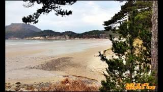 신안군 섬여행