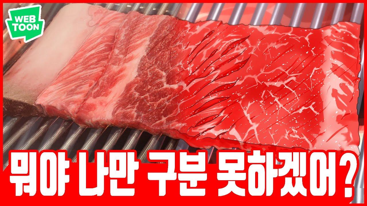 [백수세끼] 완벽한 생고기를 그리는 방법! raw meat speed painting clip studio