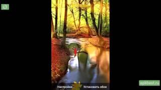Обзор - Осенний Лес Живые Обои - для Андроид