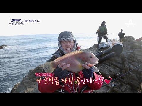 [도시어부 선공개] 어복 황제의 멍청(?) 큐티 비주얼 '희귀 호박돔' / 채널A 도시어부