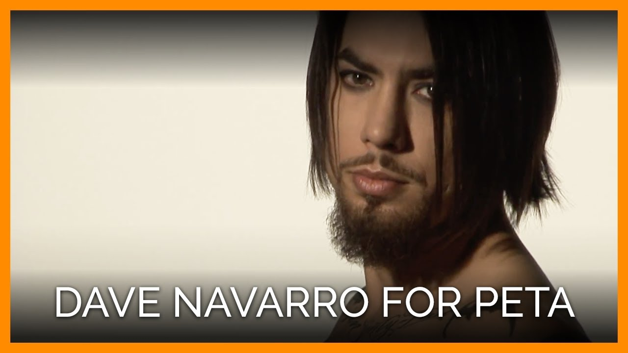dave navarro prsdave navarro 2016, dave navarro instagram, dave navarro rhcp, dave navarro facebook, dave navarro guitar, dave navarro photos, dave navarro 1990, dave navarro 2017, dave navarro signature guitar, dave navarro guitar rig, dave navarro hungry lyrics, dave navarro ink master, dave navarro - rexall, dave navarro epiphone, dave navarro 2015, dave navarro charmed, dave navarro wiki, dave navarro prs, dave navarro band, dave navarro jane acoustic/electric