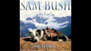 """Girl from the North Country"" by Sam Bush"