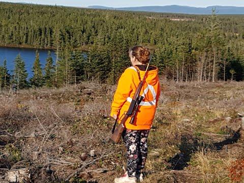 Moose Hunt Nfld,Day 3