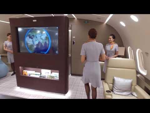 Boeing 787 Dreamliner ! - Inside The World's Only Private Boeing 787 Dreamliner!