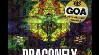 Dragonfly Records - A Voyage Into Trance(1997)