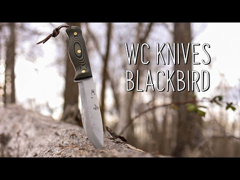 WC Knives Blackbird