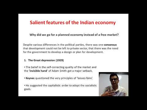 Why did India opt for a mixed economy? (HD)