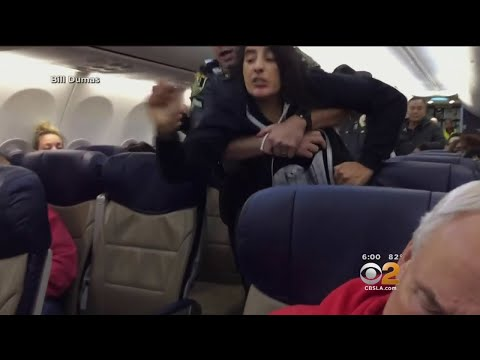 Woman Forcibly Thrown Off Plane After Complaining About 2 Dogs On Fligtt