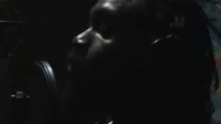 "LUTAN FYAH & SPECTACULAR ""KILL DEM SOUND"" - IRIE ITES  RECORDS"