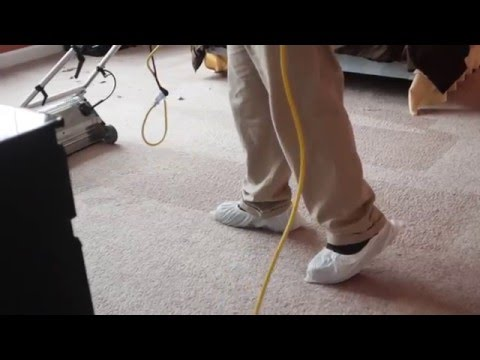 Carpet Cleaning w/Brush Pro & Truck Mount Rinse - Riverwoods, IL