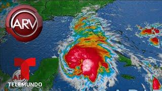 Estado de emergencia en Florida por huracán Michael   Al Rojo Vivo   Telemundo