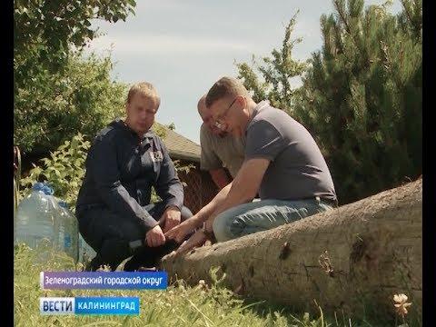 В посёлке Сосновка убрали наклонившиеся столбы и переключили дома на новую линию