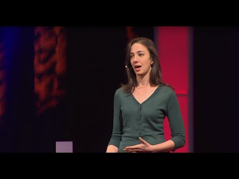 Video image: Why you think you're right — even if you're wrong