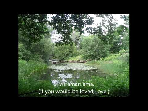 Diehnelt: Si vis amari ama. (If you would be loved, love.)