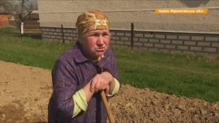 $ 1 тыс  за 16 часов  На какую зарплату едут украинцы в Европу