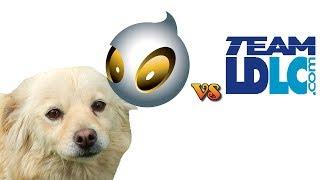 Dog Predicts Results In Cs:go, Ldlc-dignitas, 21-05-2014