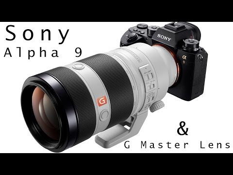 SONY A9 & 100-400MM G MASTER LENS: First Look with Cristina Mittermeier