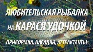 Рыбалка на карася поплавочной удочкой. Прикормка, приманки, аттрактанты на рыбу карась(Снасти для рыбалки покупаю в этом интернет-магазине: http://ali.pub/f4vqs Рыбалка поплавочной удочкой на карася...., 2016-03-30T15:00:01.000Z)