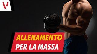 Massa muscolare ed allenamento: cosa fare
