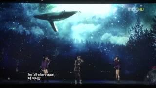 111231 A Whale