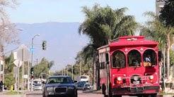 Motherland - Scenes from Lynwood, CA