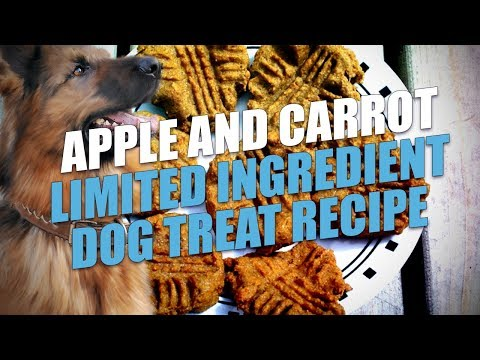 Apple And Carrot Limited Ingredient Dog Treat Recipe