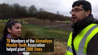 MKA News Tree Planting in Snipe Clough