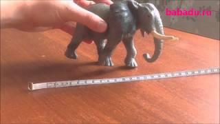 Африканский слон XL Collecta (Коллекта)