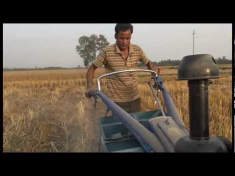 Saving water and overcoming salinity with conservation agriculture