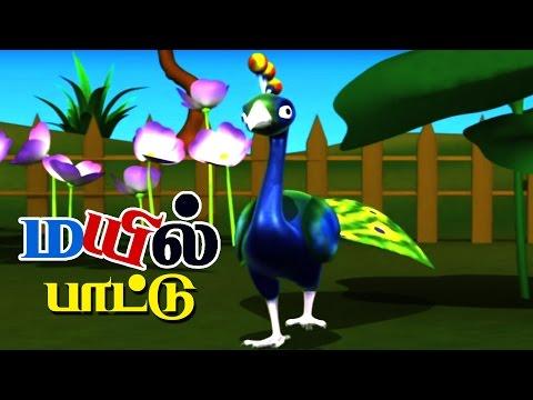PEACOCK | Nursery Rhymes With Lyrics For Kids | Bird Rhymes in Tamil | Rhymes 3D Animation