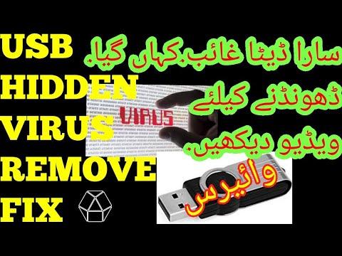 How to clean laptop usb virus. hidden files show