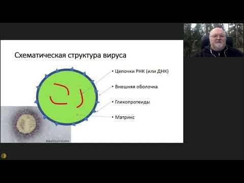 Вебинар МГНОТ: Воробьев П.А. - Коронавирус:  от фундаментальных  до социальных проблем