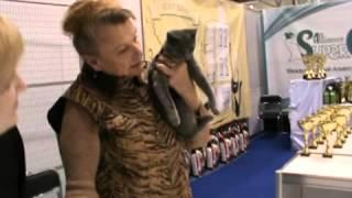 Очень очень шартрез www catbay ru 2013 Международная выставка Крокус