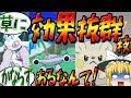 【ポケモンUSUM】魔理沙が作る ! ! 草最強伝説【ゆっくり実況】#6
